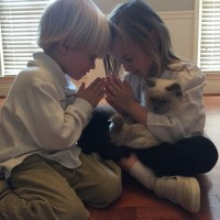 Developing Prayer Strategies with Children