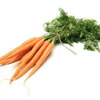 Carrot Stick Encouragement