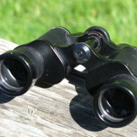 Bears and Spiritual Binoculars